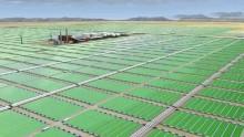Elettricita' dalle alghe: la scommessa di Lucca