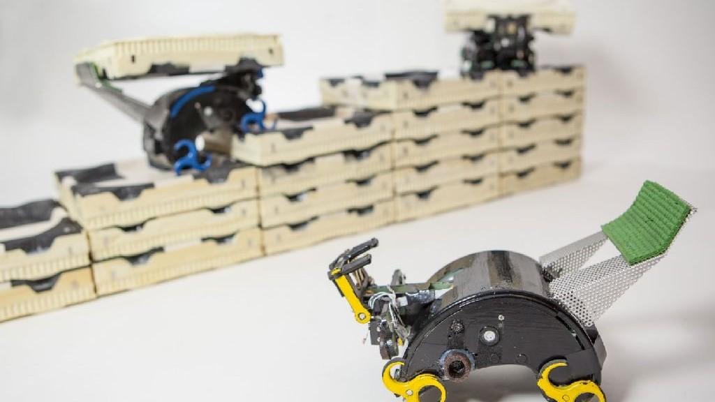wpid-21733_roboticrobotharvardtermes.jpg