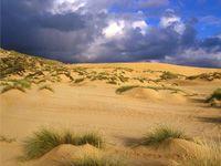 wpid-3533_dune.jpg
