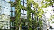 Bonus del 55% anche per i tetti verdi e giardini pensili