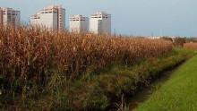 Il piano territoriale puo' decidere la destinazione agricola per contenere il consumo di suolo?