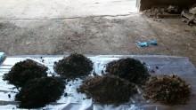 Campionamento rifiuti e norma Uni 10802: il parere della Cassazione